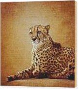 Animal Portrait Wood Print
