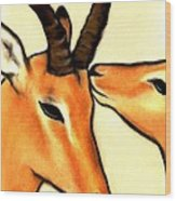 Antelope Kiss Wood Print