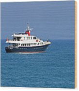 Antibes - Superyachts Of Billionaires Wood Print