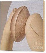 Apricot seed Wood Print