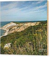 Aquinnah Gay Head Lighthouse Marthas Vineyard Massachusetts Wood Print