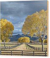 Arizona Horse Ranch Wood Print