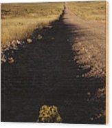 Arizona Strip Wood Print