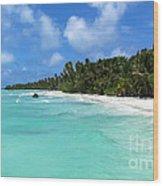 Arno Atoll Wood Print