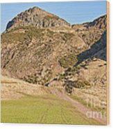 Arthur's Seat  Edinburgh  Scotland Wood Print