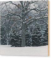As The Snow Flies Wood Print