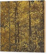Aspen Glow Vertical Wood Print
