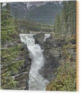 Athabasca Falls 2 Wood Print