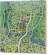 Austin Texas Cartoon Map Wood Print