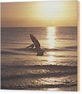 Australian Pelican Glides At Sunrise Wood Print