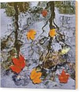 Autumn Wood Print by Daniel Janda