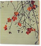 Autumn Wood Print by Diana Kraleva