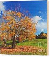 Autumn Fall Landscape Wood Print