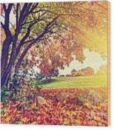 Autumn Fall Park Wood Print