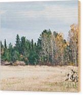 Autumn Field Wood Print