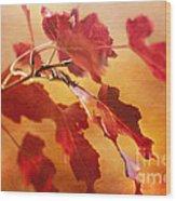 Red Blaze Wood Print