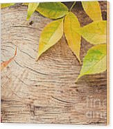 Autumn Forest Background Wood Print