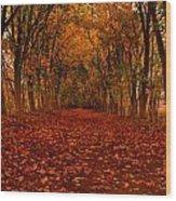 Autumn II Wood Print