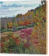 Autumn In Full Bloom Wood Print