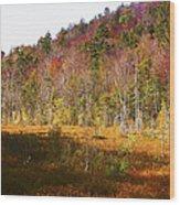 Autumn In The Adirondacks Wood Print