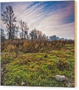 Autumn Morning Wood Print by Davorin Mance