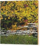 Autumn Pond 2013 Wood Print