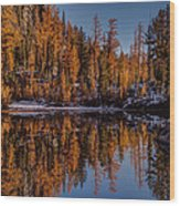 Autumn Reflected Wood Print
