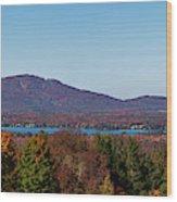 Autumn Trees At Lakeshore, Brome Lake Wood Print