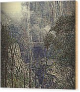 Autumn View Of The Falls Wood Print