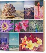 Awakening In Paradise Wood Print