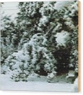 Backyard Snow Wood Print