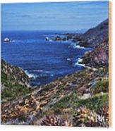Baja Coast Wood Print