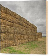 Bales Of Hay On Farmland 4 Wood Print