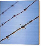 Barbed Wire Close Wood Print