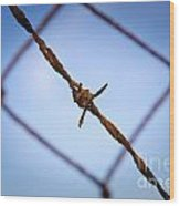 Barbed Wire Wood Print