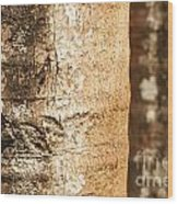 Bark Of A Tree Wood Print