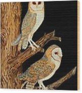Barn Owl Duo Wood Print