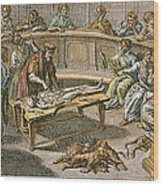 Bartolommeo Eustachio Wood Print