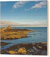 Bass Rock From Dunbar Wood Print