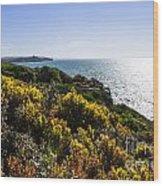 Bass Strait Ocean Landscape In Tasmania Wood Print