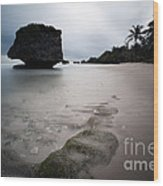 Bathsheba Beach Barbados Wood Print