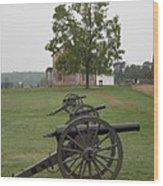 Battlefield Manassas Wood Print