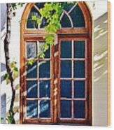 Bay Window Wood Print