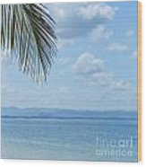 Beach Background Wood Print