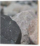 Beach Fossil Wood Print