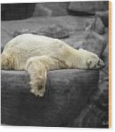 Bear On A Break Wood Print