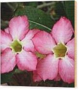Beautiful Flower Wood Print