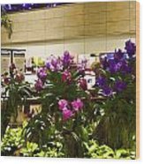 Beautiful Flowers Inside The Changi Airport In Singapore Wood Print
