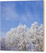 Beautiful Winter Landscape Wood Print