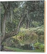 Beside The Pond Wood Print